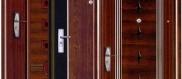 металлические мходные двери